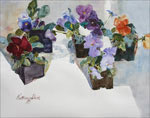 Pansy Dreams - Series - Watercolor